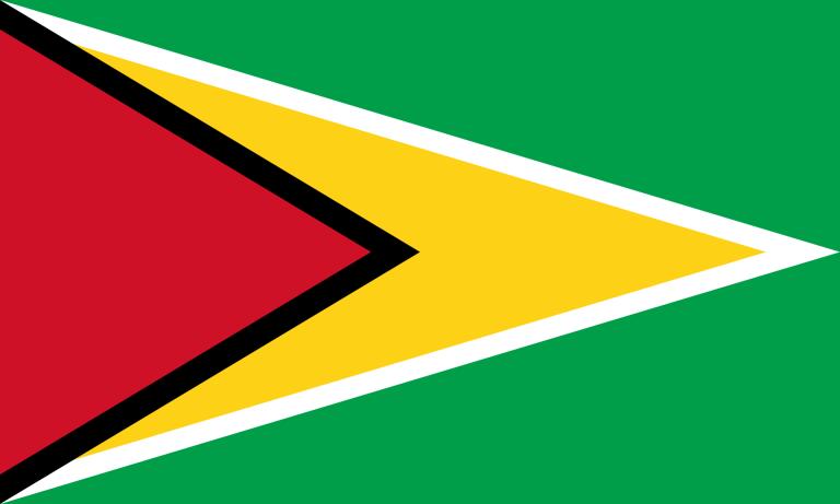 Bandeira Guiana
